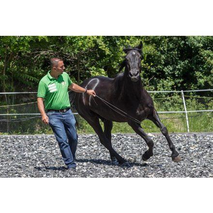 Free Horse Style 120cm kontakt pálca csapóval